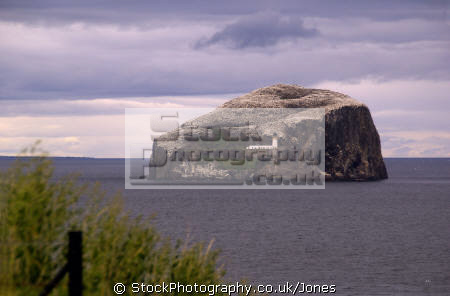 bass rock firth forth seascapes scenery scenic underwater marine diving bird colony sanctuary north berwick seacliff edinburgh sandstone oliver cromwell mary queen scots central scotland scottish scotch escocia schottland great britain united kingdom british