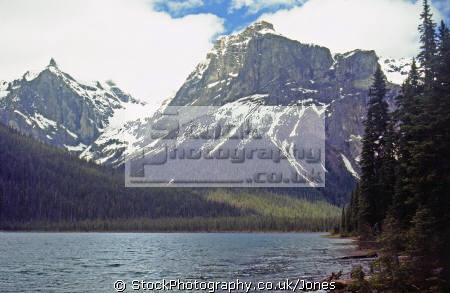 emerald lake yoho national park canada. wilderness natural history nature british columbia kicking horse river louise burgess shale banff transparent rock flour turquoisekicking turquoise rockies alpine mountains rocky canada canadian