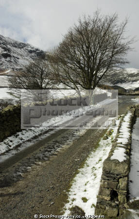 stone wall lane trees snow fells glenridding lake district british lakes countryside rural environmental uk winter road hills snowy bare cumbria cumbrian england english great britain united kingdom