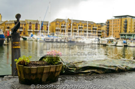 flowers dock plants plantae natural history nature misc. basket sunny boat yacht sailing limehouse tower hamlets london cockney england english great britain united kingdom british