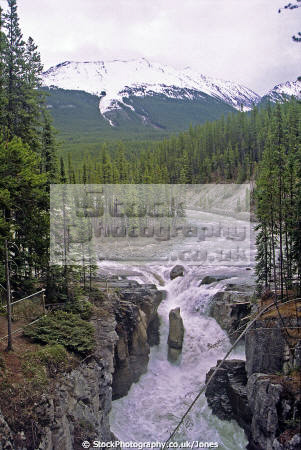 athabasca falls jasper national park alberta wilderness natural history nature misc. river waterfall cascade icefields parkway np canada canadian