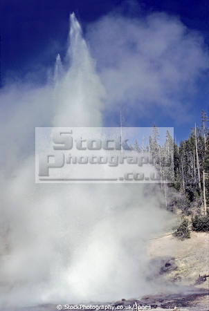 echinus geyser norris basin yellowstone national park usa. volcanic volcanoes geology geological science misc. hydrothermal hot springs caldera crater magma vulcanism wyoming usa united states america american