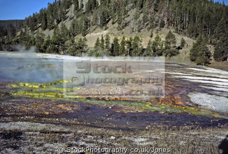 edge grand prismatics yellowstone national park usa. volcanic volcanoes geology geological science misc. algae hydrothermal hot springs caldera crater magma vulcanism wyoming usa united states america american