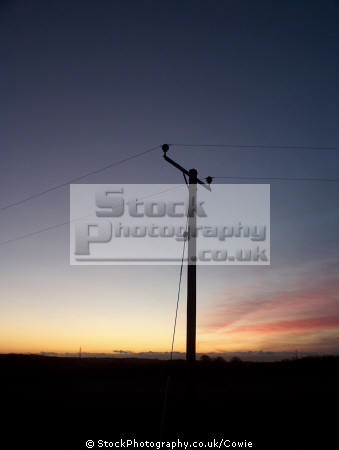 telegraph pole sunrise sky natural history nature misc. aberdeenshire scotland scottish scotch scots escocia schottland great britain united kingdom british