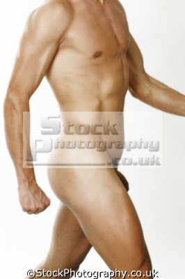 sculpted male body sexuality naked bare nudity nakedness sexual naturism men adult males masculine manlike manly manful virile mannish people persons penis
