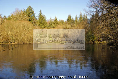 winter morning colours reflected pond french landscapes european travel france limousin correze colourful rainbow spectrum frozen lake etang la francia frankreich europe