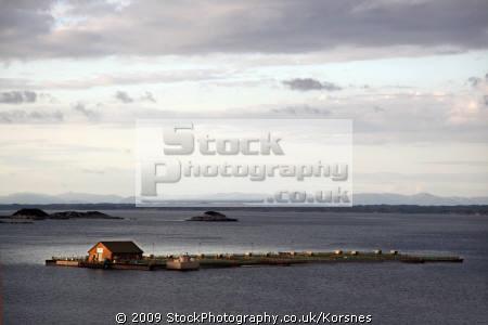 salmon sea farm øygarden western norway. marine misc. fjord norway kongeriket norge europe european norwegan