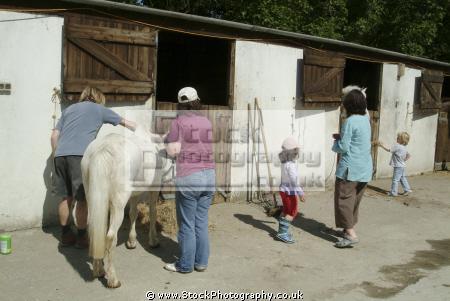 horse riding sports sporting ride learn cornwall cornish england english angleterre inghilterra inglaterra united kingdom british