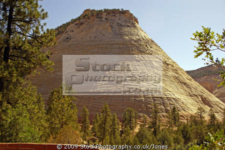checkerboard mesa zion national park rock formations geology geological science misc. navajo sandstone cliffs exposure np scenic byway highway jurassic utah usa united states america american
