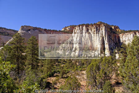 zion national park typical formations navajo sandstone. rock geology geological science misc. sandstone cliffs exposure np scenic byway highway jurassic utah usa united states america american