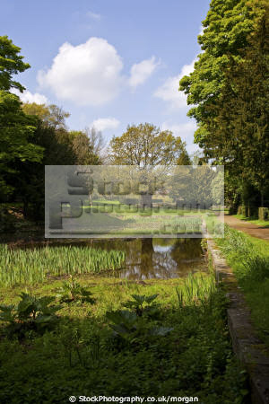 miniature lake wortley hall gardens south yorkshire uk country houses homes british housing dwellings abode architecture architectural buildings pond small rural heritage water england english angleterre inghilterra inglaterra united kingdom