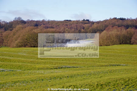 allestree furlongs classic ridge furrow park near derby uk historical britain history science golf course arable farming mediaeval medaeval cultivation crops british england midlands derbyshire english angleterre inghilterra inglaterra united kingdom