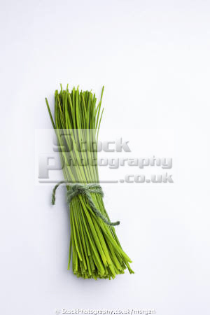 bunch cut chives food nourishment nutrients abstracts herbs fresh cooking ingredients united kingdom british