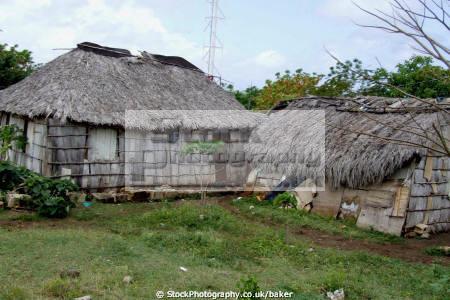 cuban houses palm tree leaves banes holguin cuba slum huts poverty poor living caribbean