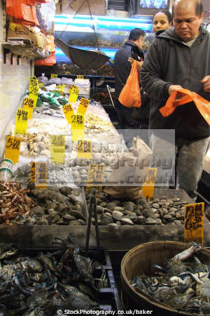 live crabs sold store china town new york jointed limbed marine life market chinese food shell fish fresh shop shopping big apple united states american