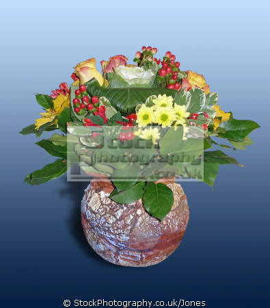 flowers vase graded blue background plants plantae natural history nature floral bouquet posy arrangement pretty colourful correze limousin france la francia frankreich french