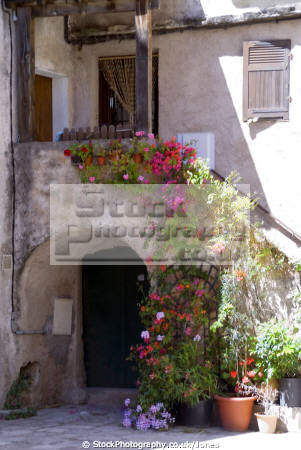 corsica floral doorway town saint-florent saint florent saintflorent french buildings european haute-corse haute corse hautecorse port saint flowers colourful corse france la francia frankreich