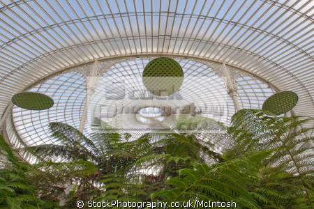 inside kibble palace west end large circular prism mirrors reflecting plants below. glass roof wrought iron blue sky visible. historical uk buildings history british architecture architectural glasshouse greenhouse glasgow central scotland scottish scotch scots escocia schottland united kingdom