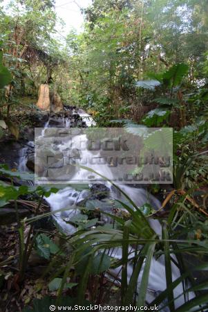 eden project waterfall rainforest biome tourist attractions england english botanical garden attraction architectural geodesic dome cornish cornwall angleterre inghilterra inglaterra united kingdom british