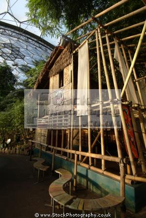eden project bam house rainforest biome tourist attractions england english botanical garden attraction architectural geodesic dome cornish cornwall angleterre inghilterra inglaterra united kingdom british