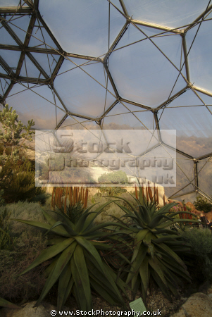 eden project californian grassland section mediterranean biome tourist attractions england english botanical garden attraction architectural geodesic dome cornish cornwall angleterre inghilterra inglaterra united kingdom british