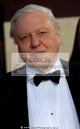 david attenborough legendary bbc presenter natural history documentary british tv hosts television presenters celebrities celebrity fame famous star white caucasian portraits