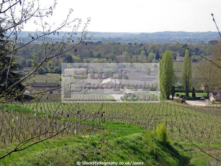 vineyards saint milion region france french landscapes european emilion aquitaine gironde viticulture viniculture vineyard grapevine winemaking bordeaux claret grapes vignoble cabernet sauvignon franc merlot la francia frankreich