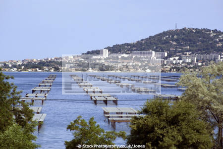 languedoc france oyster parks tables ostreicoles bouzigues bassin thau french landscapes european herault etang mediterranean seafood coquillages huitres oysters fishing bateau roussillon la francia frankreich