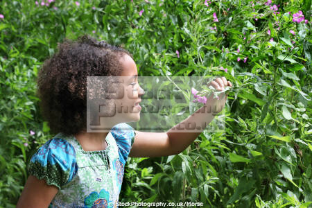 young mixed race girl park looking flower multicultural ethnic minority summer child children