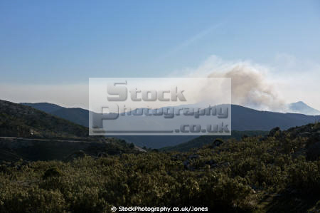 andalucia spain forest blazes ronda mountains trees wooden natural history nature spanish espagne espa andalusia laga malaga inflammable conflagration wildfire burning woodland costa del sol spanien la spagna