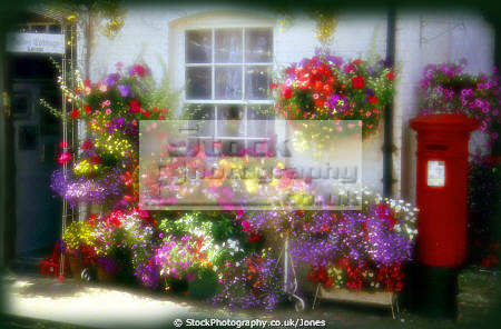 wonderful floral display outside house weobley herefordshire uk cottages british housing houses homes dwellings abode architecture architectural buildings england english flowers bouquet posy colourful post pillar box angleterre inghilterra inglaterra united kingdom