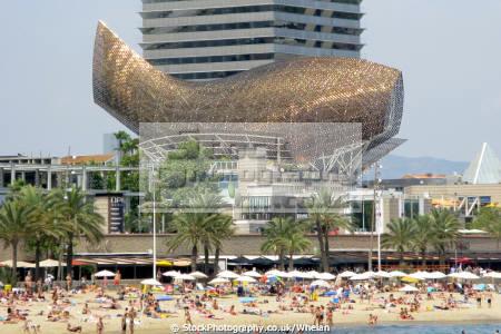 goldfish sculpture seafront barcelona catalunya catalonia spanish espana european costa mediteranian beach spain spanien espa espagne la spagna