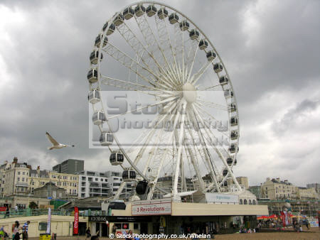 wheel brighton british seaside coastal resorts leisure brigton seagull sea south coast sussex home counties england english angleterre inghilterra inglaterra united kingdom