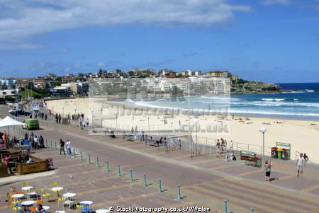 bondi beach sydney australian botanic gardens australia