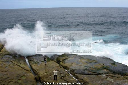 tourists bit close breaking waves rocks near bondi beach sydney australian botanic gardens australia