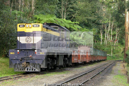 diesel locomotive puffing billy preserved railway belgrave near melbourne trains railways rail railroads transport transportation victoria dandenongs australia australian
