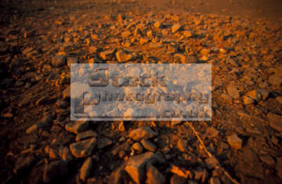 stoney ground textures patterns abstracts misc. rocks middlesex middx england english angleterre inghilterra inglaterra united kingdom british