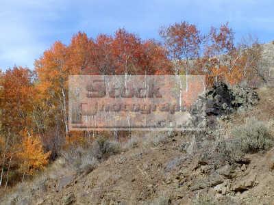 autumn scene hootowl road pocatello idaho wilderness travel usa united states america american