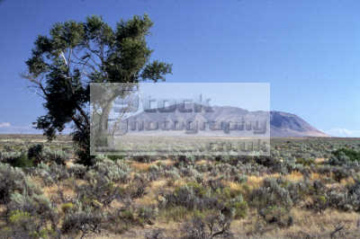 big butte arco desert idaho desolate natural history nature misc. fresh organic outdoors hiking spiritual usa united states america american