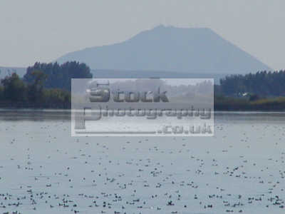 mud lake wildlife management area scene idaho american yankee travel water mountain usa united states america