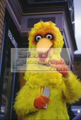 big bird sesame st cartoon arts misc. california californian usa united states america american