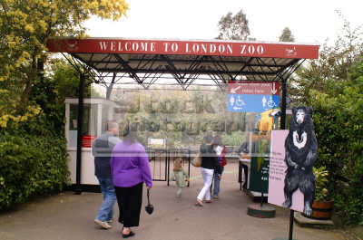 entrance london zoo famous sights capital england english uk westminster cockney angleterre inghilterra inglaterra united kingdom british